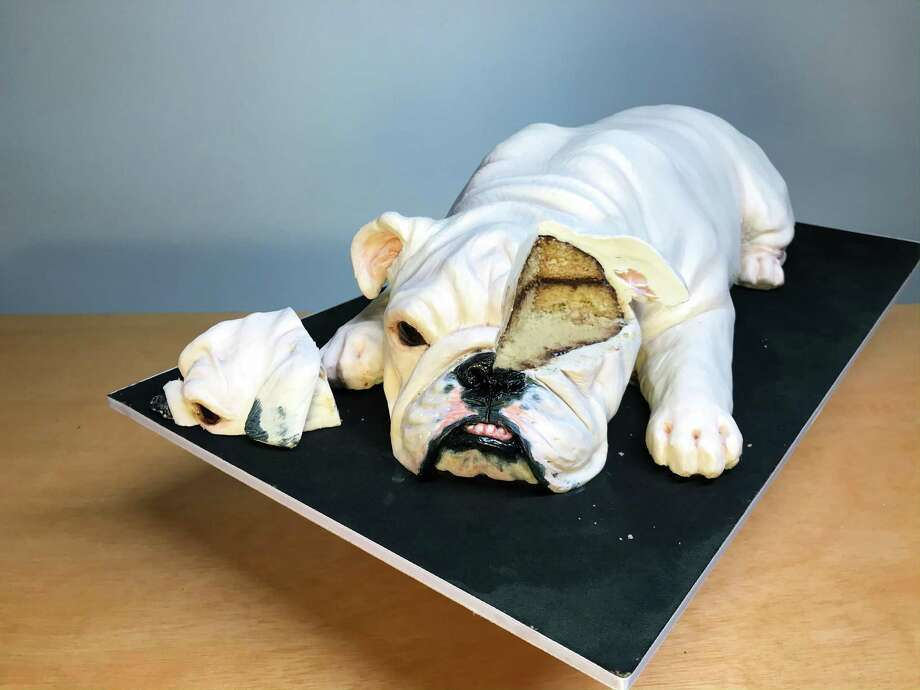 Is it a puppy? Nope, it's a cake. Natalie Sideserf of Sideserf Cake Studio has been making realistic cakes since 2012. Photo: Sideserf Cake Studio