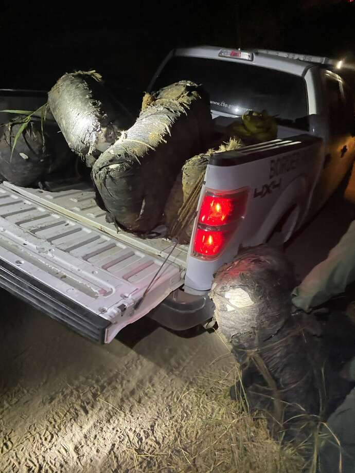A group of smugglers abandoned these 591.8 pounds of marijuana near the Laredo Regional Food Bank on 2802 Anna Ave., according to the U.S. Border Patrol. Authorities said the contraband had an estimated street value of $472,800. Photo: Courtesy