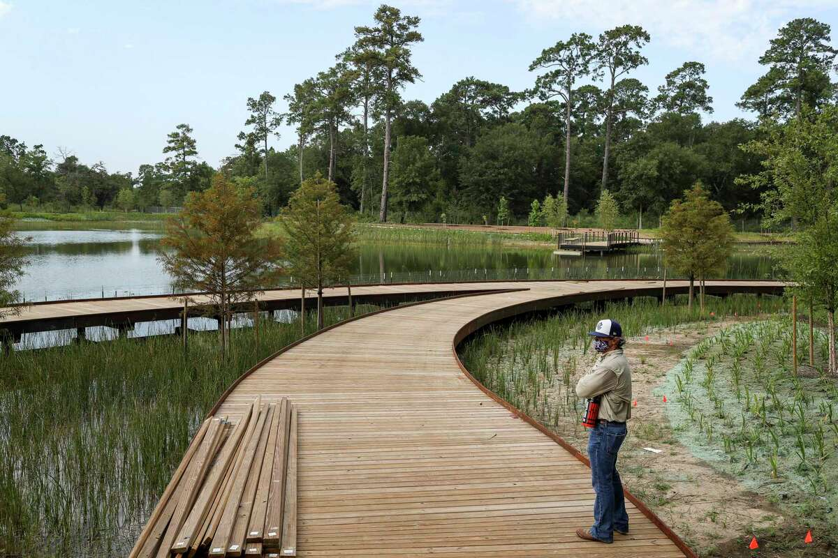 """Randy Odinet, project director, looks out over Hines Lake on Wednesday, July 15, 2020, in the Clay Family Eastern Glades section of Memorial Park in Houston. """"For us, you can see you have to walk the line of creating the thing in the master plan while also protecting the things that have the most value,"""" Odinet said. """"We're trying to create these more sustainable habitats and ecosystems through each project,"""" he said. """"But, at the same time this is a park, so we're trying to bring people closer to these habitats."""" The 100-acre section is scheduled to open to the public at the end of the month."""