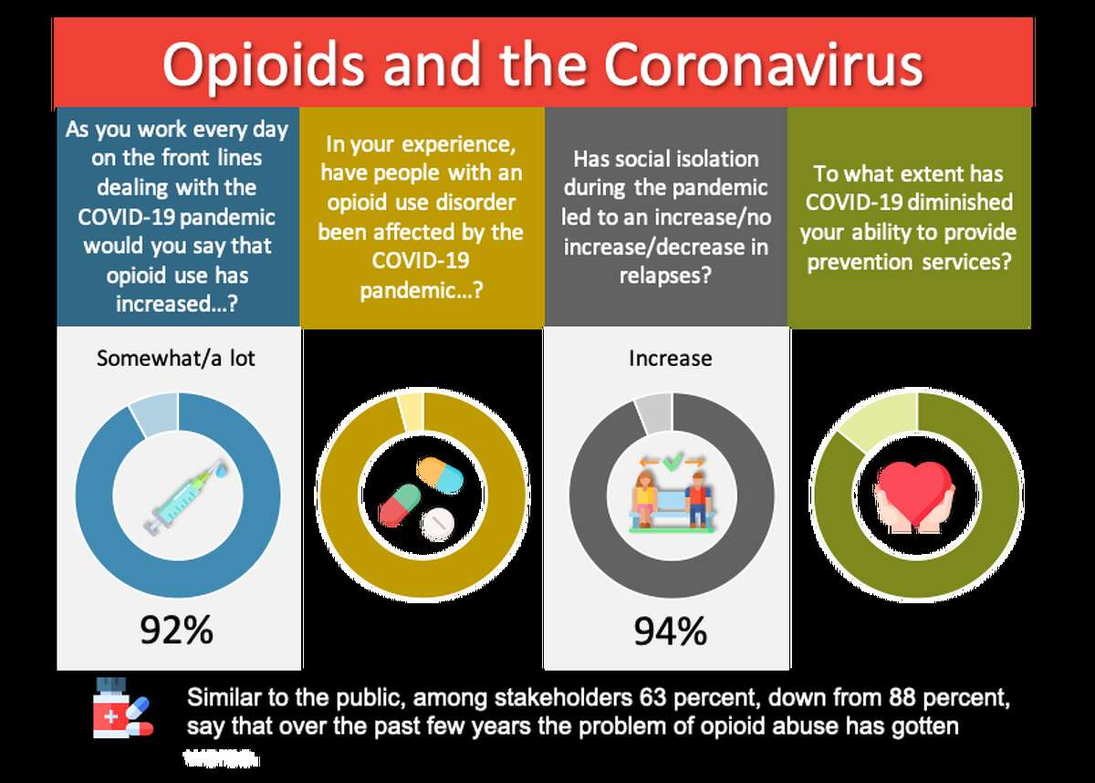 A view of how health professionals and other stakeholders responded to a Siena College Research Institute survey about opioid use as part of the Prescription for Progress, a community effort to fight the opioid epidemic.