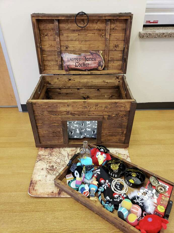 This treasure chest-themed doghouse is up for auction through the Citizens for Animal Protection'sDesigner Doghouse Competition and Auction. Photo: Courtesy Of Citizens For Animal Protection