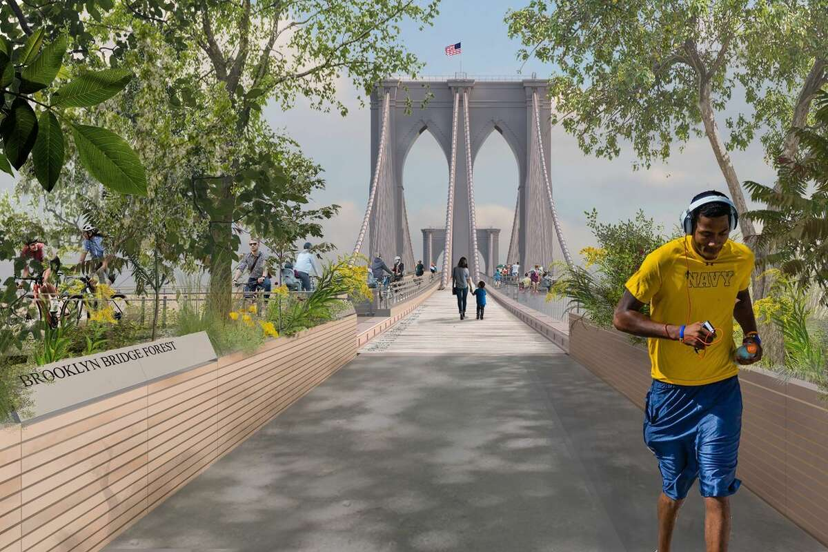 'Brooklyn Bridge Forest,