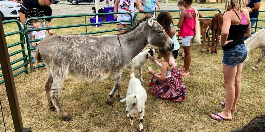 The Mecosta Osceola Substance Awareness Coalition will host its annual Petting Zoo and Family Picnic on Saturday, July 25. Photo: Photo Courtesy Of Facebook