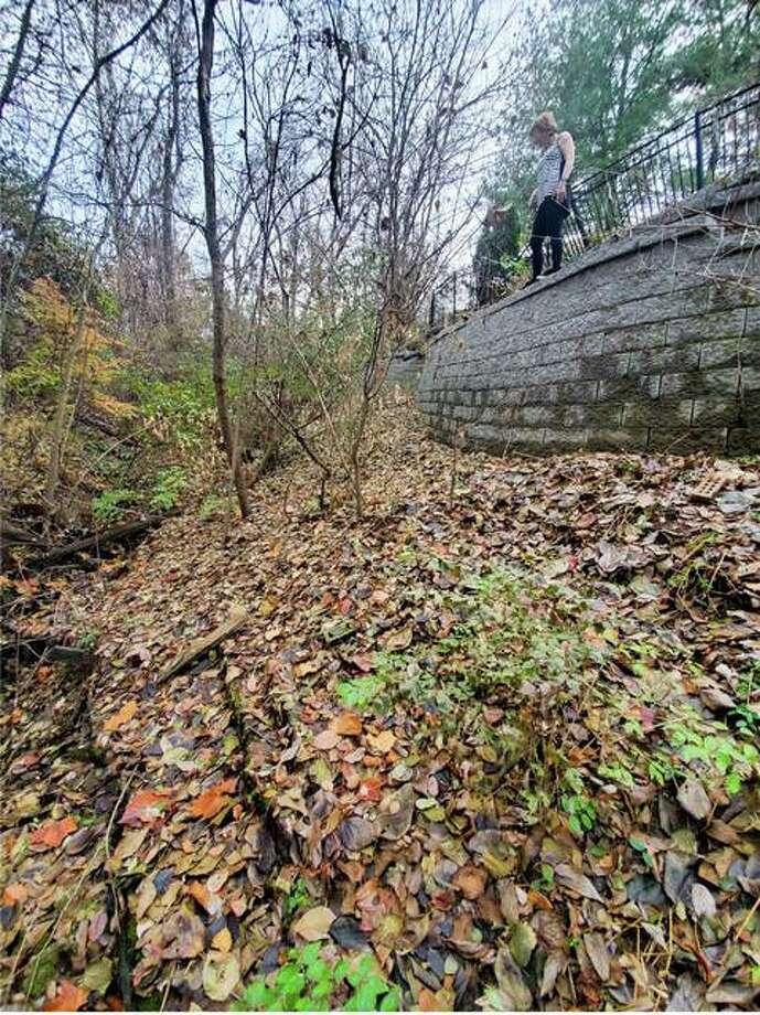 Retaining wall pre-project taken November 2019 Photo: Images From The Village Of Glen Carbon And The Frohnerts