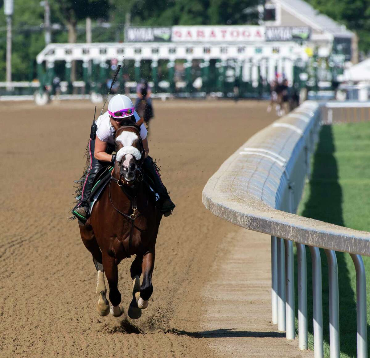 Belmont Stakes winner and local favorite New York Bred Tiz the Law breezed under the guidance of exercise rider Heather Smullen at the Saratoga Race Course July 18, 2020 in Saratoga Springs, N.Y. Photo by Skip Dickstein/Special to the Times Union.