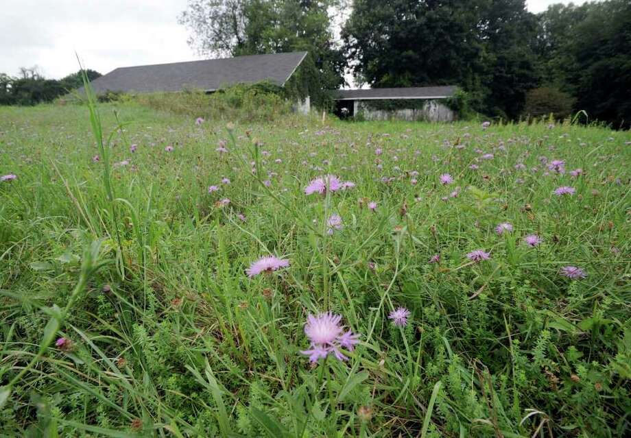 A section of the Lee Farm property on Wooster Heights Road in Danbury where the military is proposing to build a U.S. Army Reserve Center. Photo taken Wednesday, August 25, 2010. Photo: Carol Kaliff / The News-Times