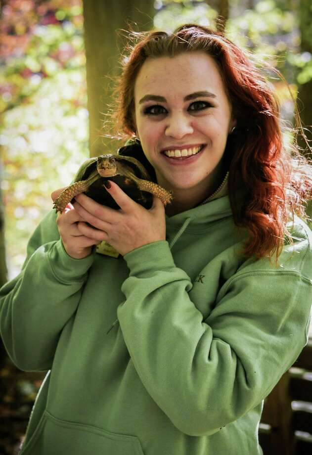 Elma the turtle, held by educator Allegra Jacobs, is one of the ambassador animals from Woodcock Nature Center expected to visit the Nod Hill Brewery on July 26. Photo: Contributed Photo / Woodcock Nature Center / Wilton Bulletin Contributed