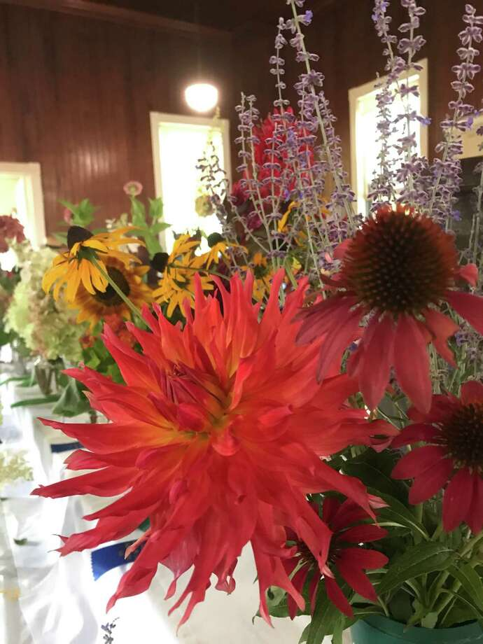 Flowers, such as these from last year's fair, will be judged again at this year's Cannon Grange agricultural fair and exposition, which will be held virtually on Sunday, Aug. 30. Photo: Contributed Photo
