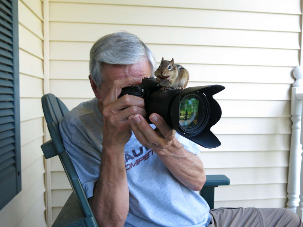 Bruce Jeffers, Altamont: I was trying to take a picture of my friend Adrienne feeding a chipmunk that had become rather friendly, but he had other ideasAdrienne was able to snap this picture
