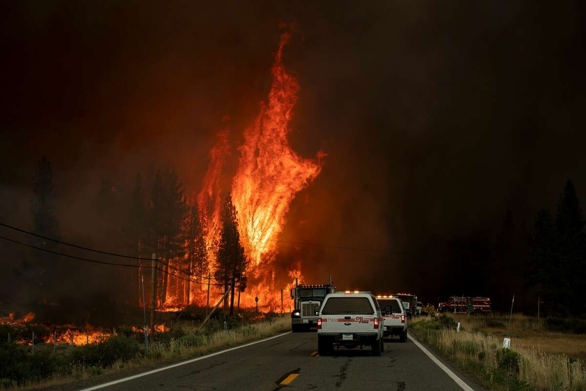 Flames rip through trees as the Hog fire jumps highway 36 about 5 miles from Susanville, California on July 20, 2020. - The fire exploded to more than 6,000 acres and created its own weather, generating lightning, thunder, rain and fire whirls out of a huge pyrocumulonimbus ash plume towering above. The Lassen County Sheriff's office issued a mandatory evacuation order for the area.