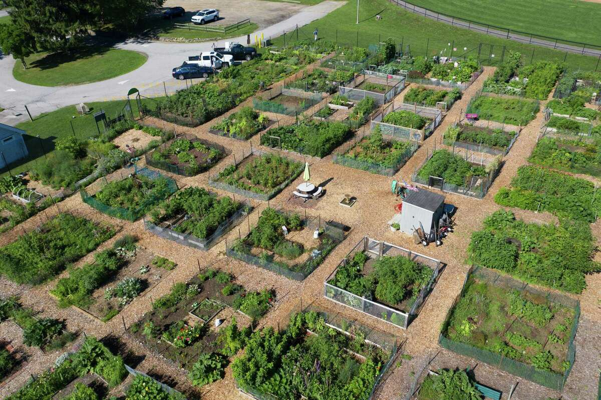 A drone view of the patchwork that is Cherry Lawn Community Gardens.