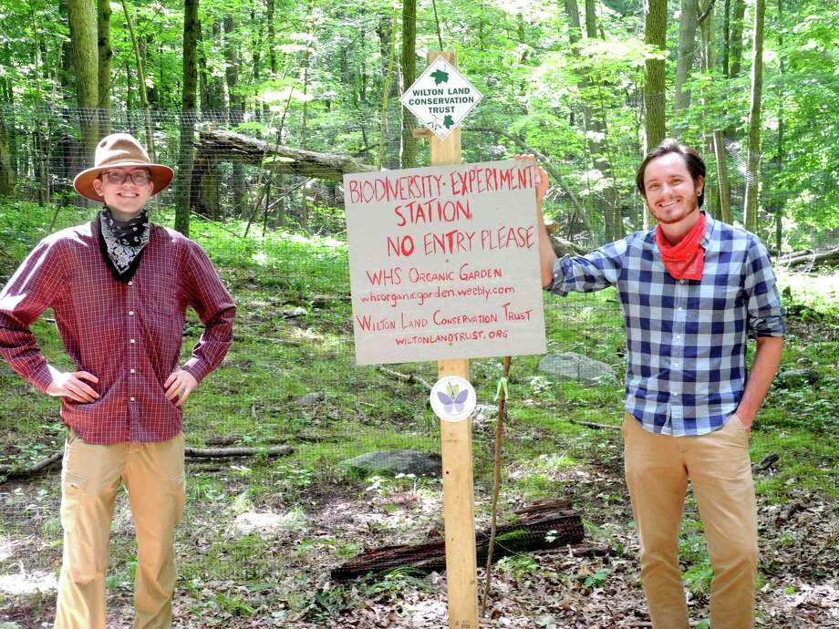 Brett Gilman, left, and David McCarthy, executive director of the Wilton Land Conservation Trust, stand at the entrance to a biodiversity experiment station at the Spencer-Rice Preserve. Photo: Jeannette Ross / Hearst Connecticut Media / Wilton Bulletin