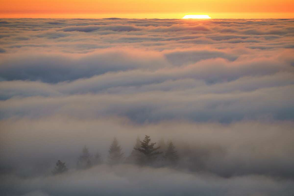 Photographer John Todd composed this image of the view of the costal fog just before sunset at Mount Tamalpais.