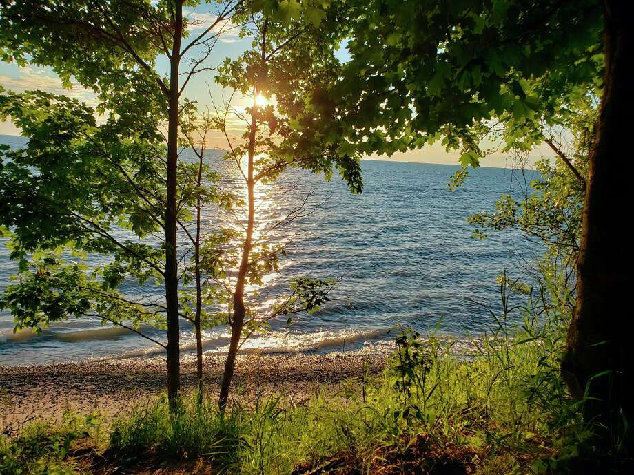 All but two coastal Lake Michigan counties in the state have a known Lyme disease risk as they have recorded two or more confirmed local cases, according to the Michigan Department of Health and Human Services. (Arielle Breen/News Advocate)