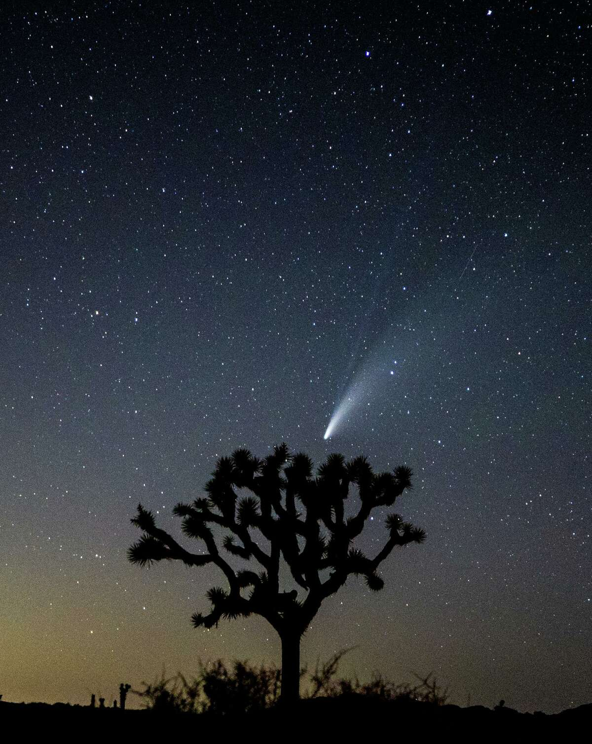 Comet NEOWISE, also known as 'C/2020 F3', is seen on July 19, 2020 in Joshua Tree, Calif. (Photo by Rich Fury/Getty Images)