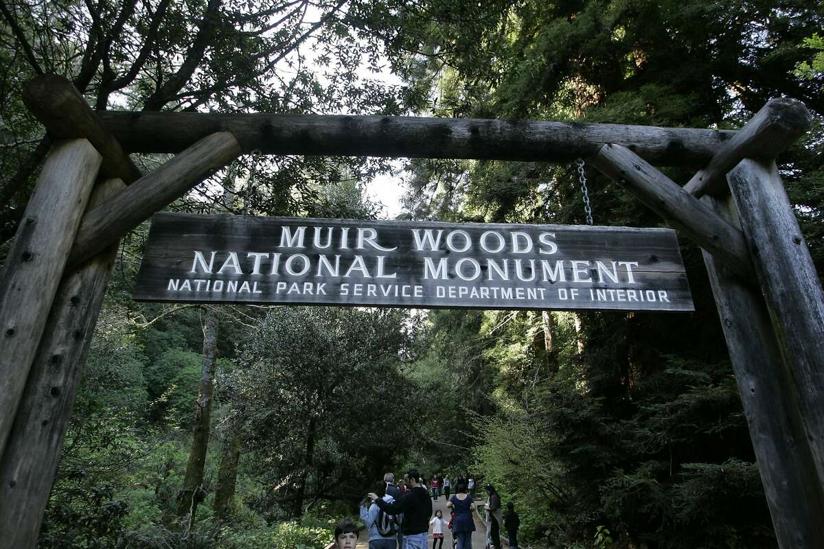 FILE - In this March 25, 2008, file photo, visitors walk along a pathway near the entrance to the Muir Woods National Monument, named after John Muir, in Marin County, Calif. The Sierra Club is reckoning with the racist views of founder John Muir, the naturalist who helped spawn environmentalism. The San Francisco-based environmental group said Wednesday, July 22, 2020, that Muir was part of the group's history perpetuating white supremacy. (AP Photo/Eric Risberg, File)