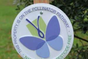 A plaque marks a spot along the Pollinator Pathway in Greenwich in this file photo.