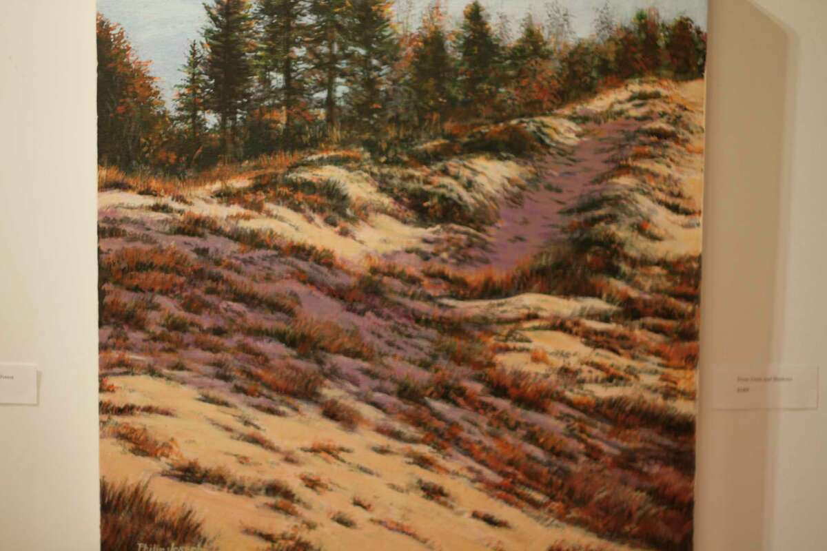 """""""Dune Grass and Shadows"""" is part of theexhibit called """"Joseph Works"""" at Ramsdell Regional Center for the Arts.(Kyle Kotecki/News Advocate)"""