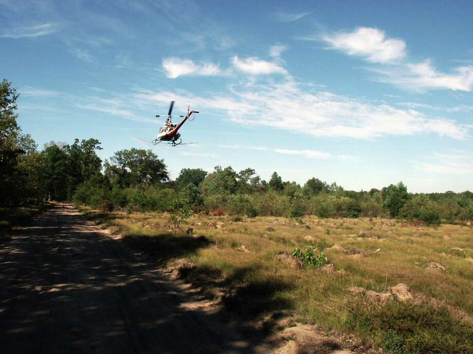 A helicopter sprays herbicide during a Michigan Department of Natural Resources treatment. (Michigan DNR/Courtesy Photo)