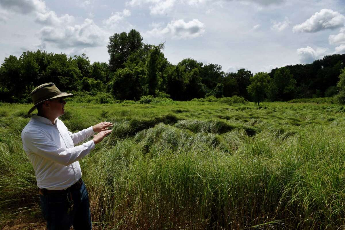 David Pitlyk, historic site assistant at Bennington Battlefield State Historic Site, shows some of the battlefield land that was recently preserved through the American Battlefield Trust on Friday, July 24, 2020, in Hoosick, N.Y. The field is part of a 23 acre parcel of land that the American Battlefield Trust has purchased in the lead-up to the 250th celebration of the American Revolution. Battlefield Trust hopes to transfer the property to New York State Parks. (Will Waldron/Times Union)