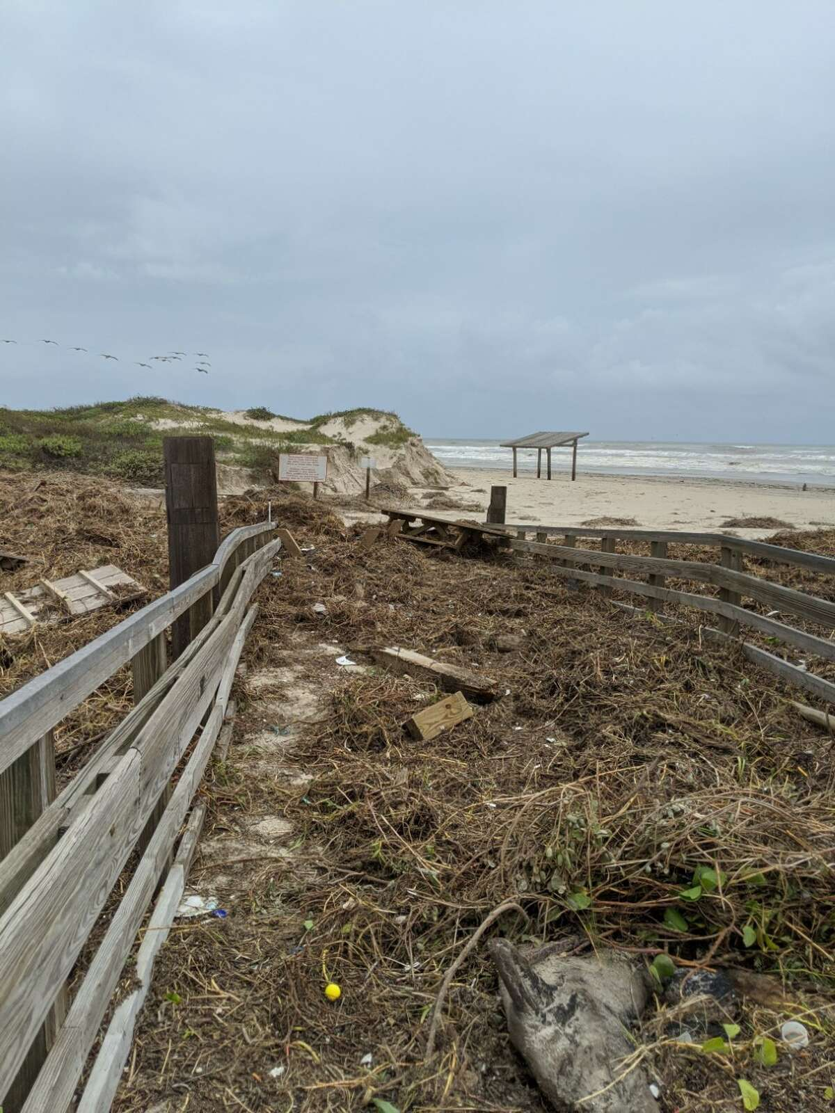 Padre Island National Seashore: According to the PINS Facebook page, its beaches sustained damage from Hurricane Hanna and will remain closed until further notice.