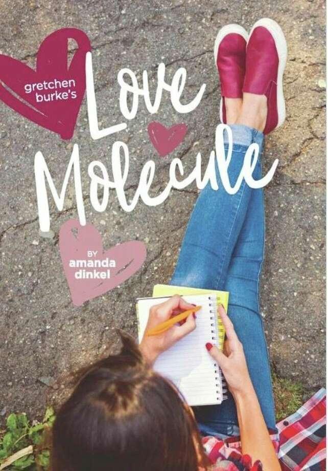 "Gladwin native, Caro High School art teacher and Bay City resident Amanda Dinkel published her debut novel, ""Gretchen Burke's Love Molecule,"" in May."