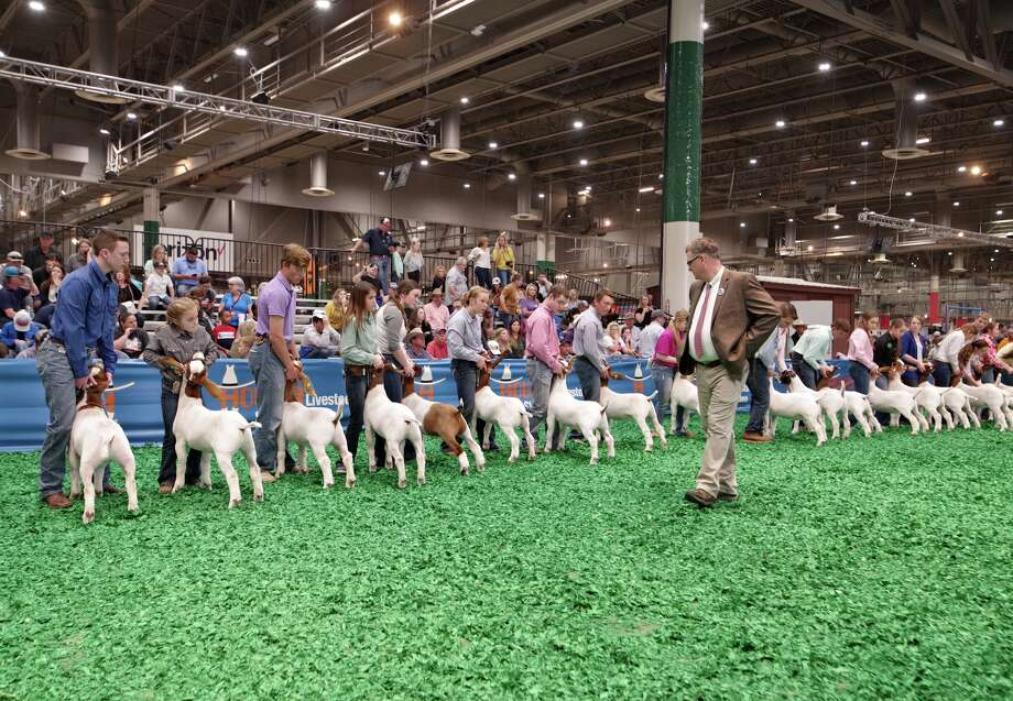 Houston Livestock Show and Rodeo awarded Houston technical schools and community colleges with $300k in vocational scholarships Photo: Courtesy: Houston Livestock Show And Rodeo
