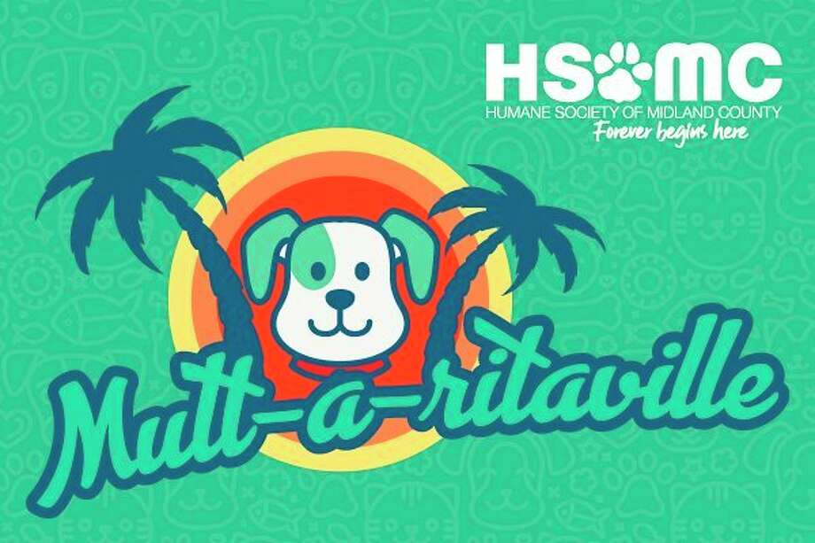 """The Humane Society of Midland County is hosting a fundraiser called """"Mutt-a-ritaville"""" in the form of a social media photo contest. (Photo provided/Humane Society of Midland County)"""