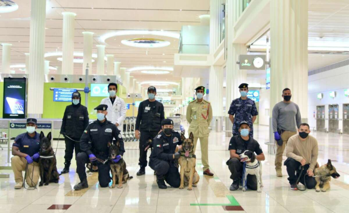 At Dubai International Airport, authorities are using police dogs to detect COVID-19