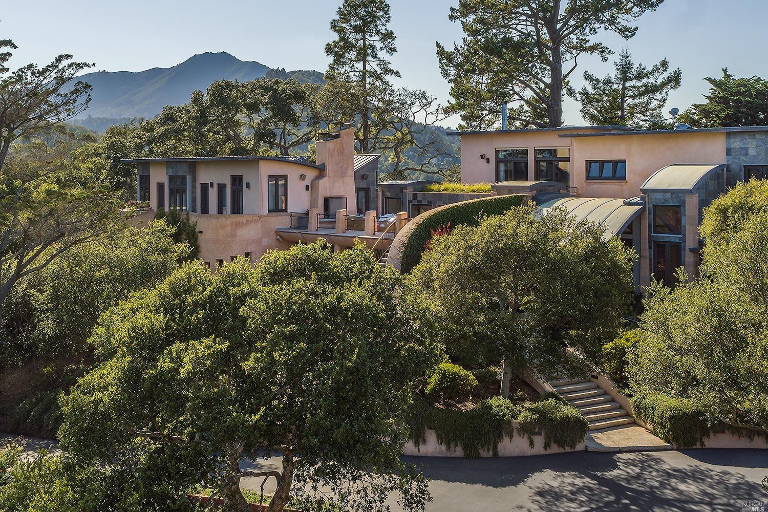 WeWork founder's Corte Madera mansion with a 3-story water slide hits the market