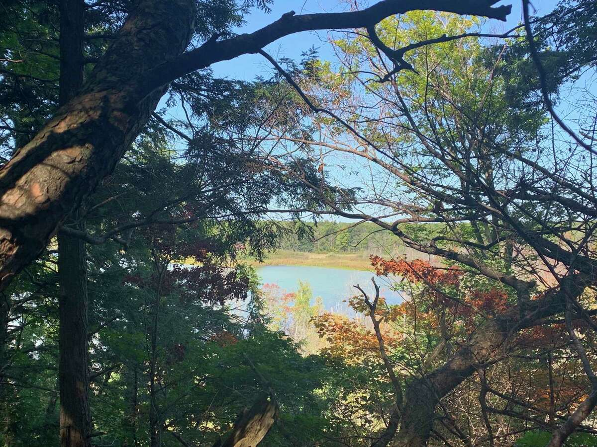 The Grand Traverse Regional Land Conservancy is raising money to buy property for a potential preserve; a166 acre propertybetween Long Lake and Rush Lake. (Courtesy Photo/GTRLC)