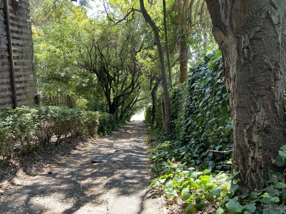 """The Shortcut,"" a stairway that connects the Claremont Hotel parking lot with Alvarado Street in Berkeley. Although it's quite wooded, the parking lot just is feet away. Photo: Katie Dowd/SFGATE"