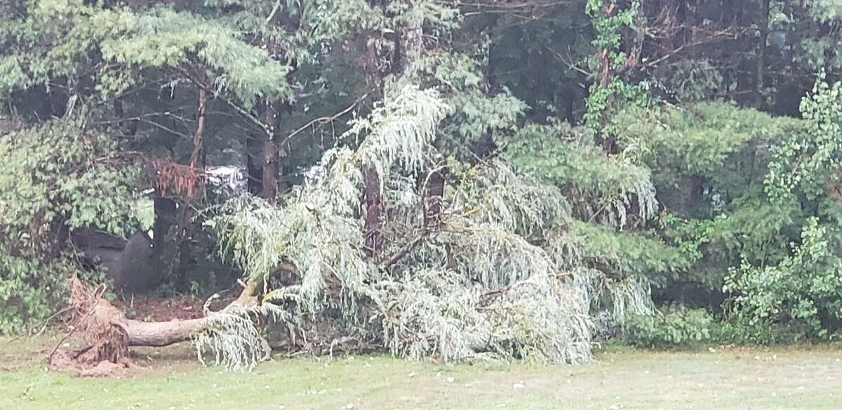 Norfolk Volunteer Fire Department say the couple retreated to their basement and came up to see several trees down on their property.