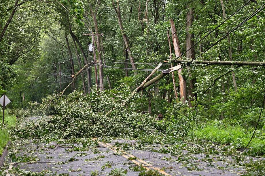 Three trees down on Booth Hill Road near Mischa Hill Road. Photo: Contributed