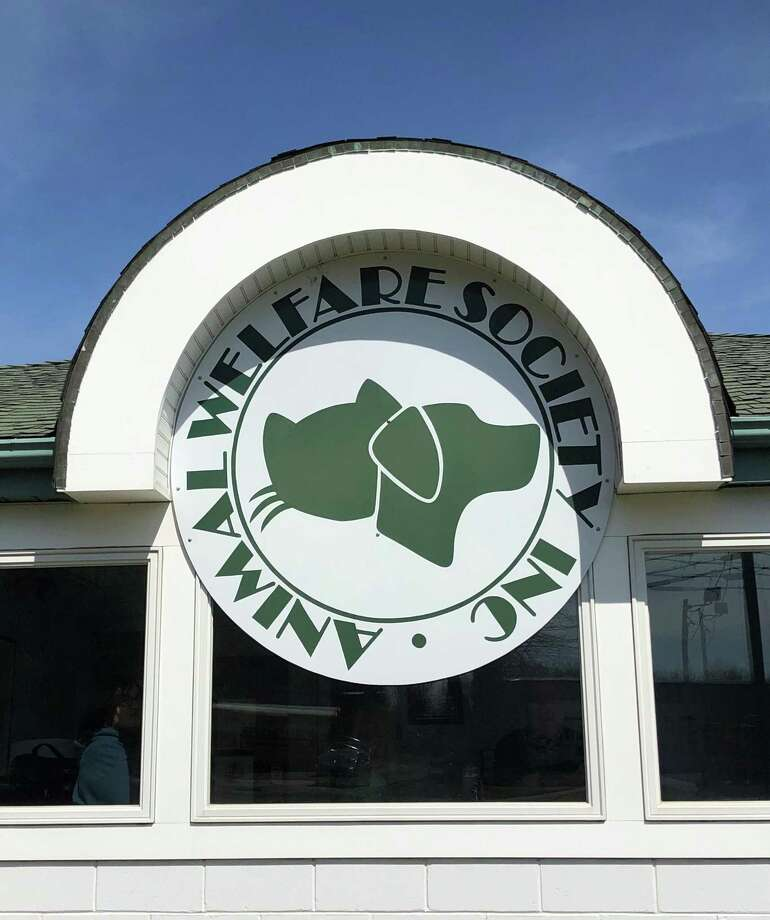 A family and furry friends food drive will be held Aug. 15 at the Animal Welfare Society in New Milford. Photo: Deborah Rose / Hearst Connecticut Media / The News-Times  / Spectrum