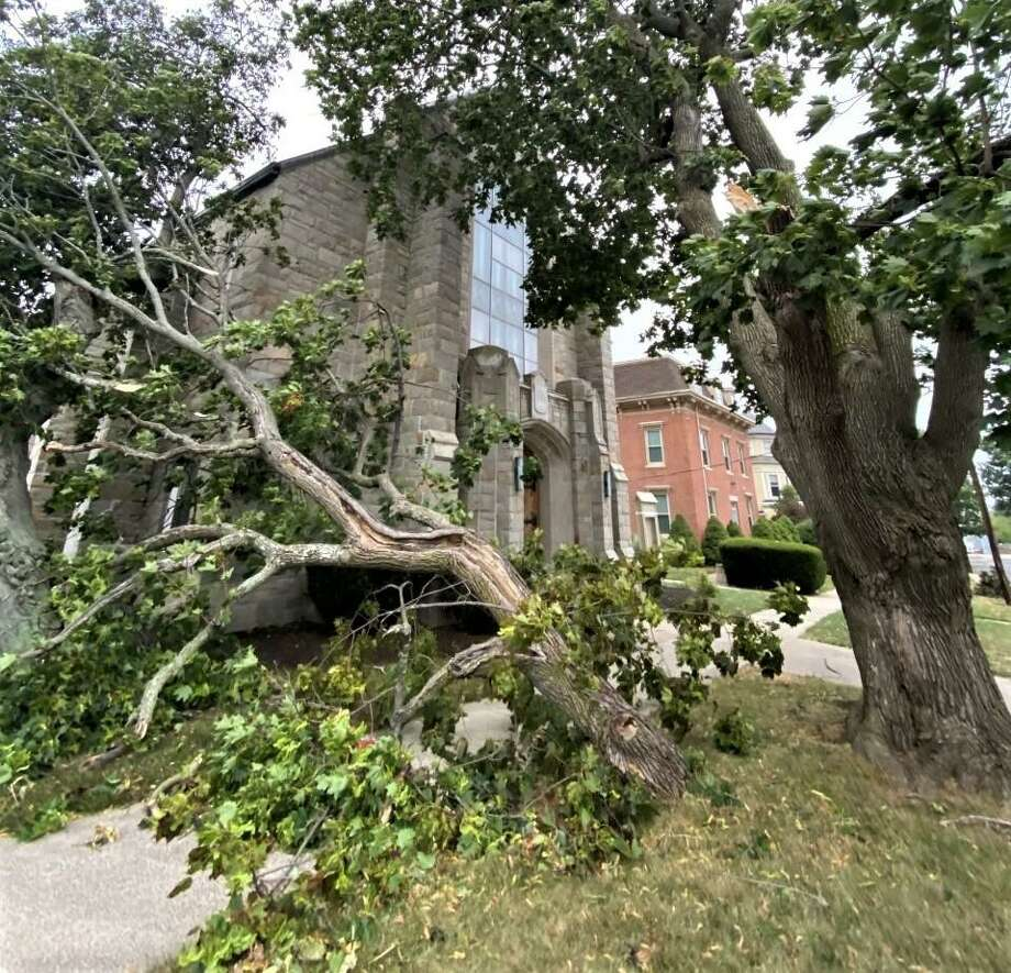 Powerful winds from Tropical Storm Isaias felled scores of trees across the city Tuesday afternoon, knocking out power to thousands. Several toppled on the South Green on Main Street in Middletown. Photo: Ed McKeon Photo / Contributed