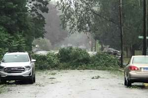 A tree blocks the road at the intersection of Park Avenue and East Lawton Street in Torrington Tuesday evening. v