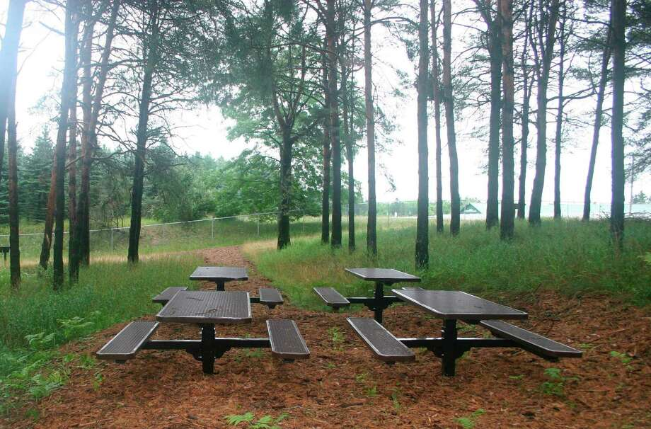 The Twin Creek Nature Area in Evart includes picnic tables where groups can gather for educational lectures or to take a break from their work in the ecological preserve. (Herald Review photo/Cathie Crew)