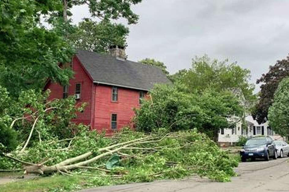 Trees, wires down on State Street in Guilford near 4:15 p.m. Aug. 5 during tropical storm Isaias.