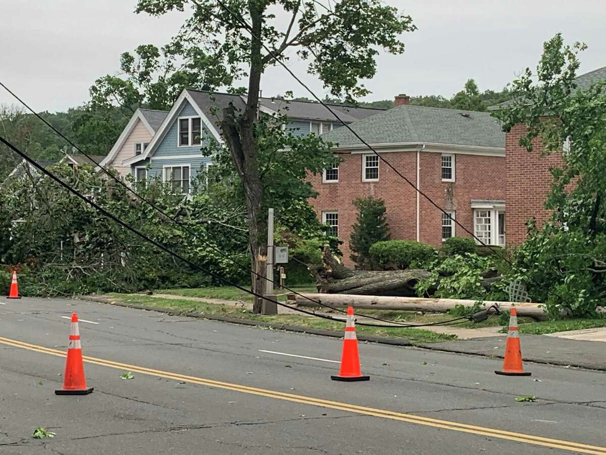 A downed tree with wires on Whitney Ave. in Hamden on Aug. 4, 2020.