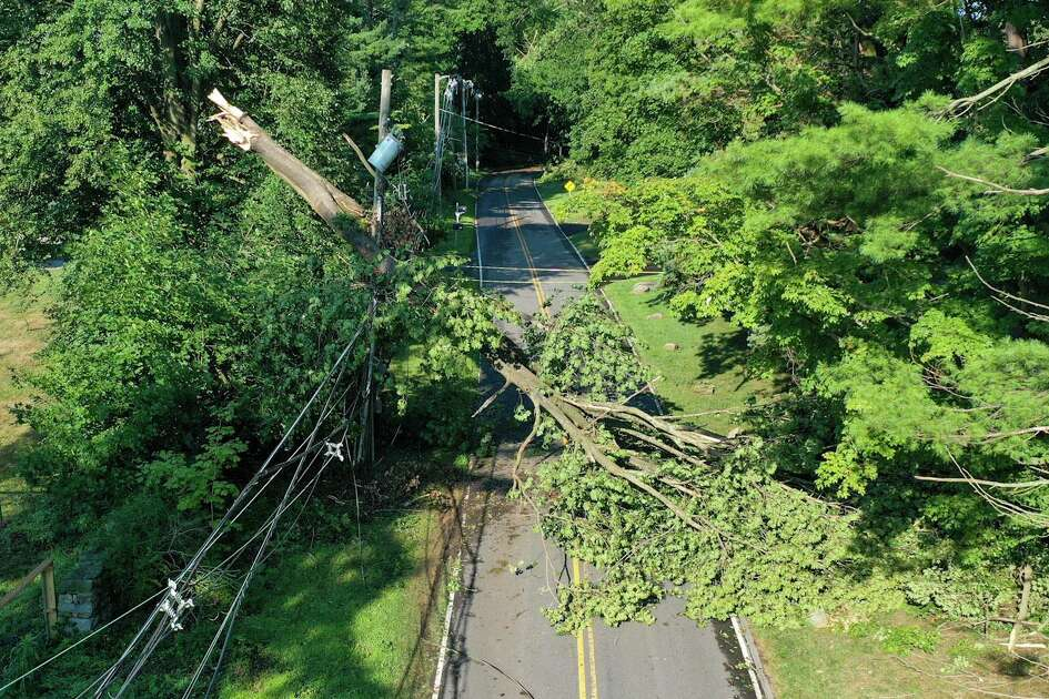 A tree hangs on power lines in New Canaan Wednesday in the aftermath of Tropical Storm Isaias.