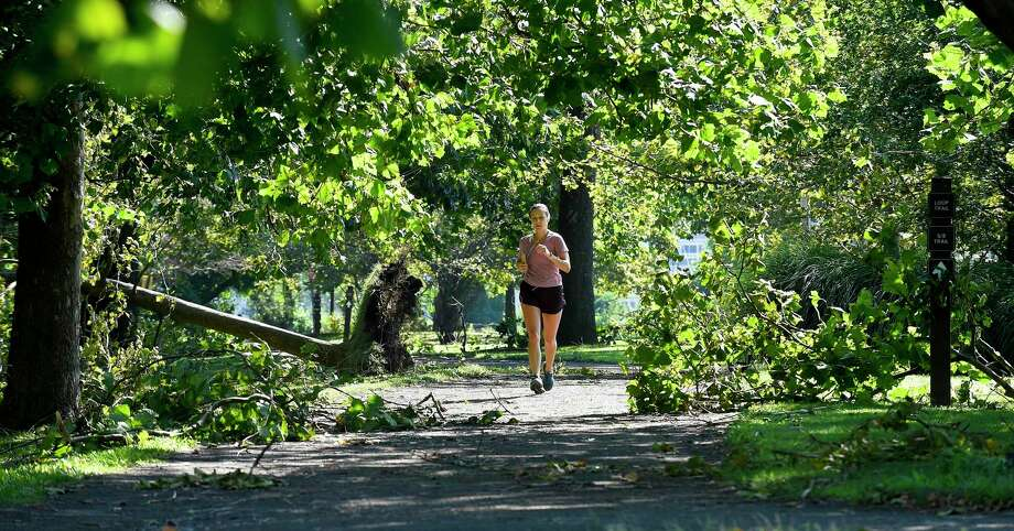 A morning jogger weaves through fallen trees and limbs at Kosciuszko Park on August 5, 2020 in Stamford, Connecticut. Photo: Matthew Brown / Hearst Connecticut Media / Stamford Advocate