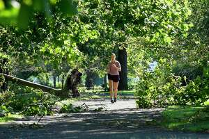 A morning jogger weaves through fallen trees and limbs at Kosciuszko Park on August 5, 2020 in Stamford, Connecticut.