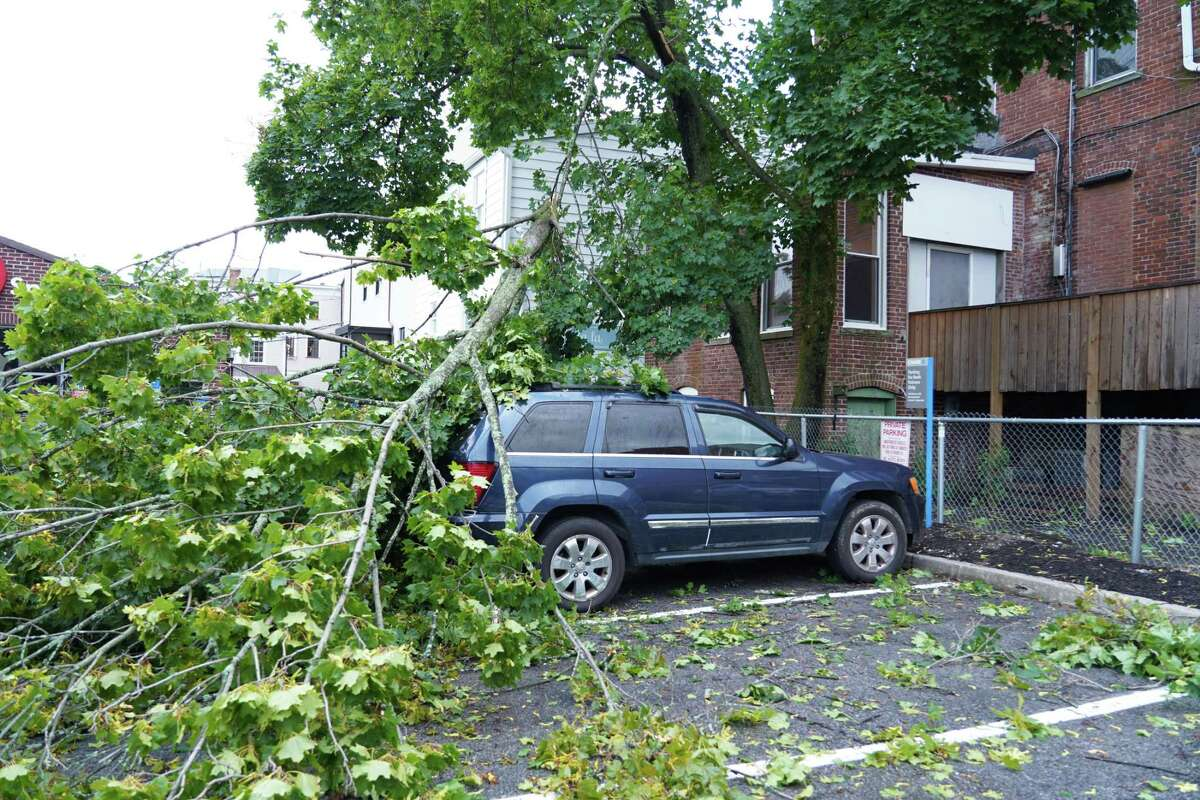 A car in the Chase Bank parking lot on East Avenue in New Canaan was under fallen branches after tropical storm Isaias came through on Aug. 4.