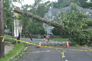 A tree down on Main Street after tropical storm Isaias on Tuesday, Aug. 4.