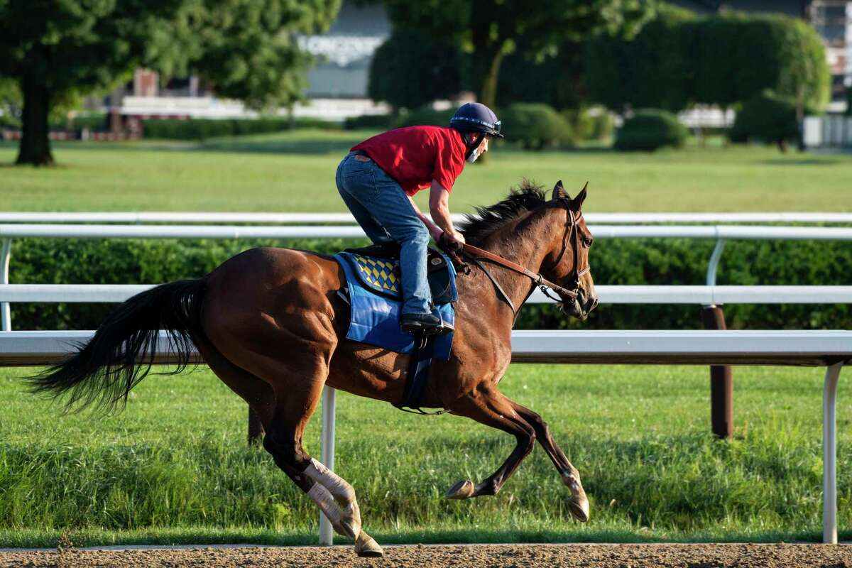 Test Stakes entrant Gamine gallops under exercise rider Simon Harris in the early morning at the Saratoga Race Course Wednesday Aug. 5, 2020 in Saratoga Springs, N.Y. Photo by Skip Dickstein/Special to the Times Union