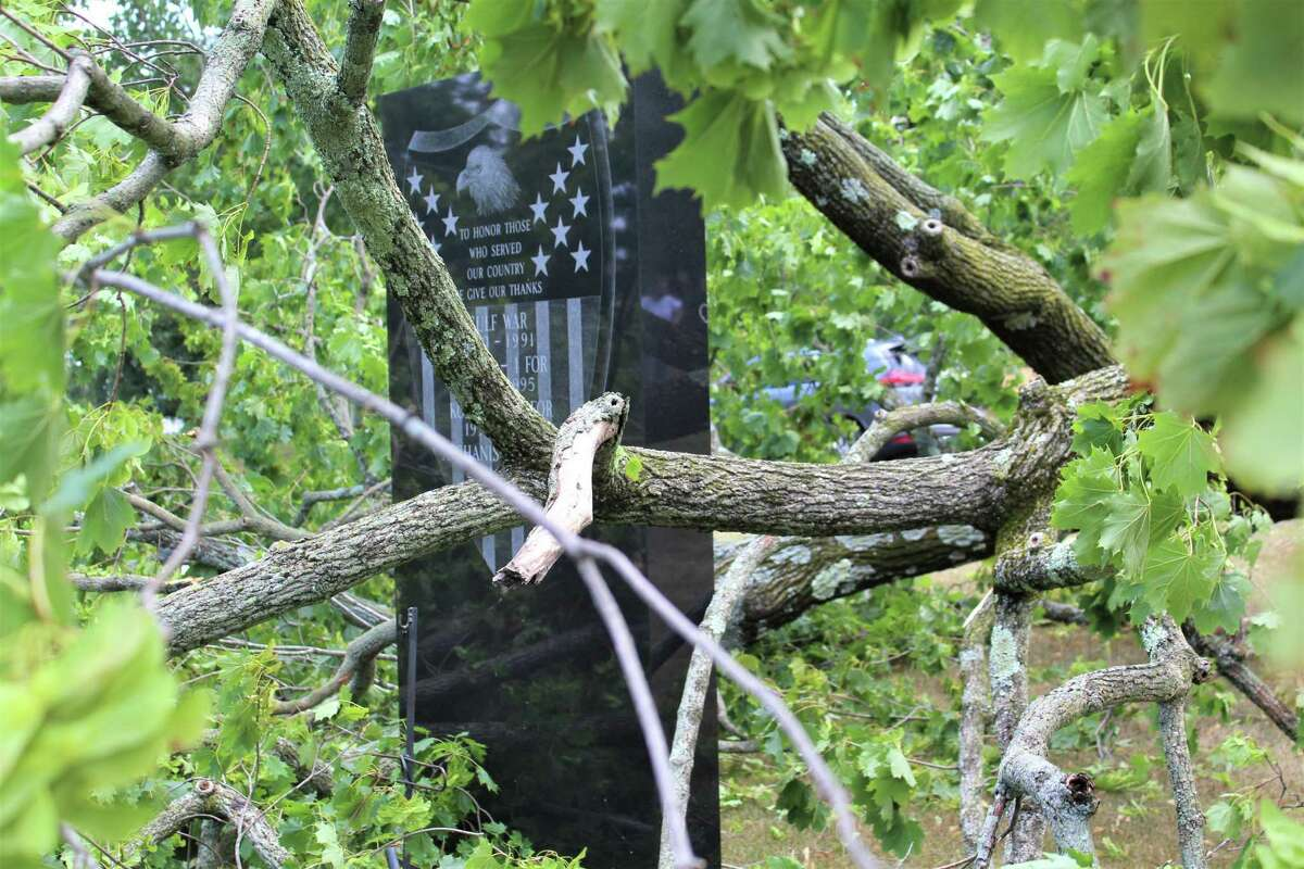 Two monuments on Veterans Green in Middletown narrowly escaped damage from two large trees which fell when Tropical Storm Isaias hit the city Tuesday afternoon.