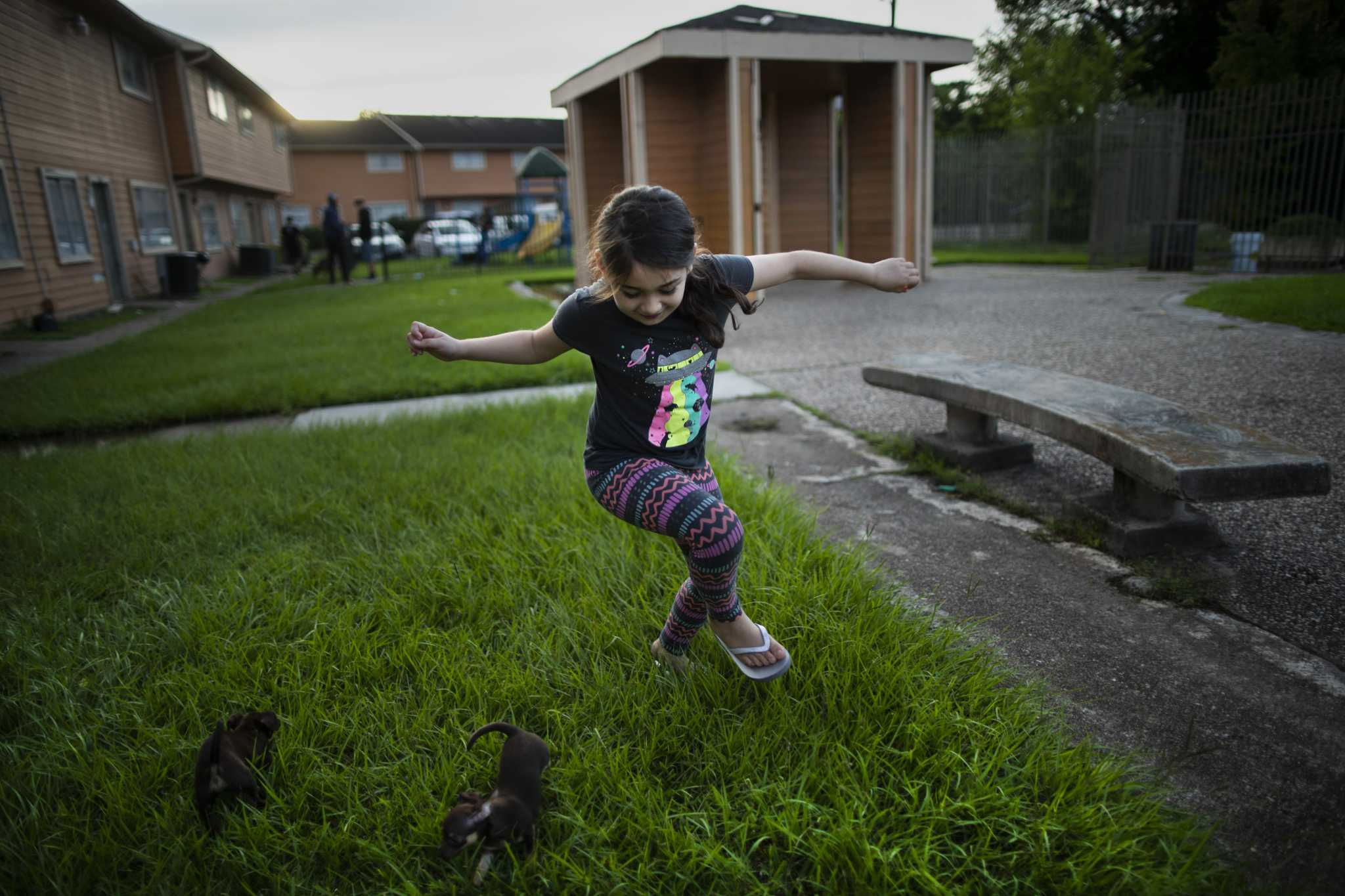Emmarose Partida, 8, plays on Aug. 1 with two puppies her family found in need of a home near their home in Aldine. Partida's mother and father have chosen to not immediately send their children back to Aldine ISD schools due COVID-19 concerns and potential health implications.