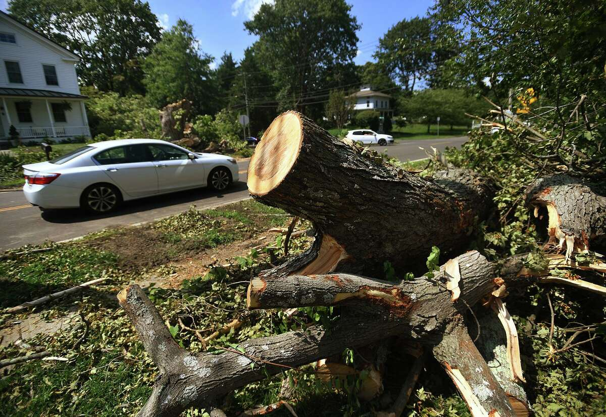 Massive downed trees line Route 108 in Trumbull, Conn. in the aftermath of Tropical Storm Isaias on Wednesday, August 5, 2020.