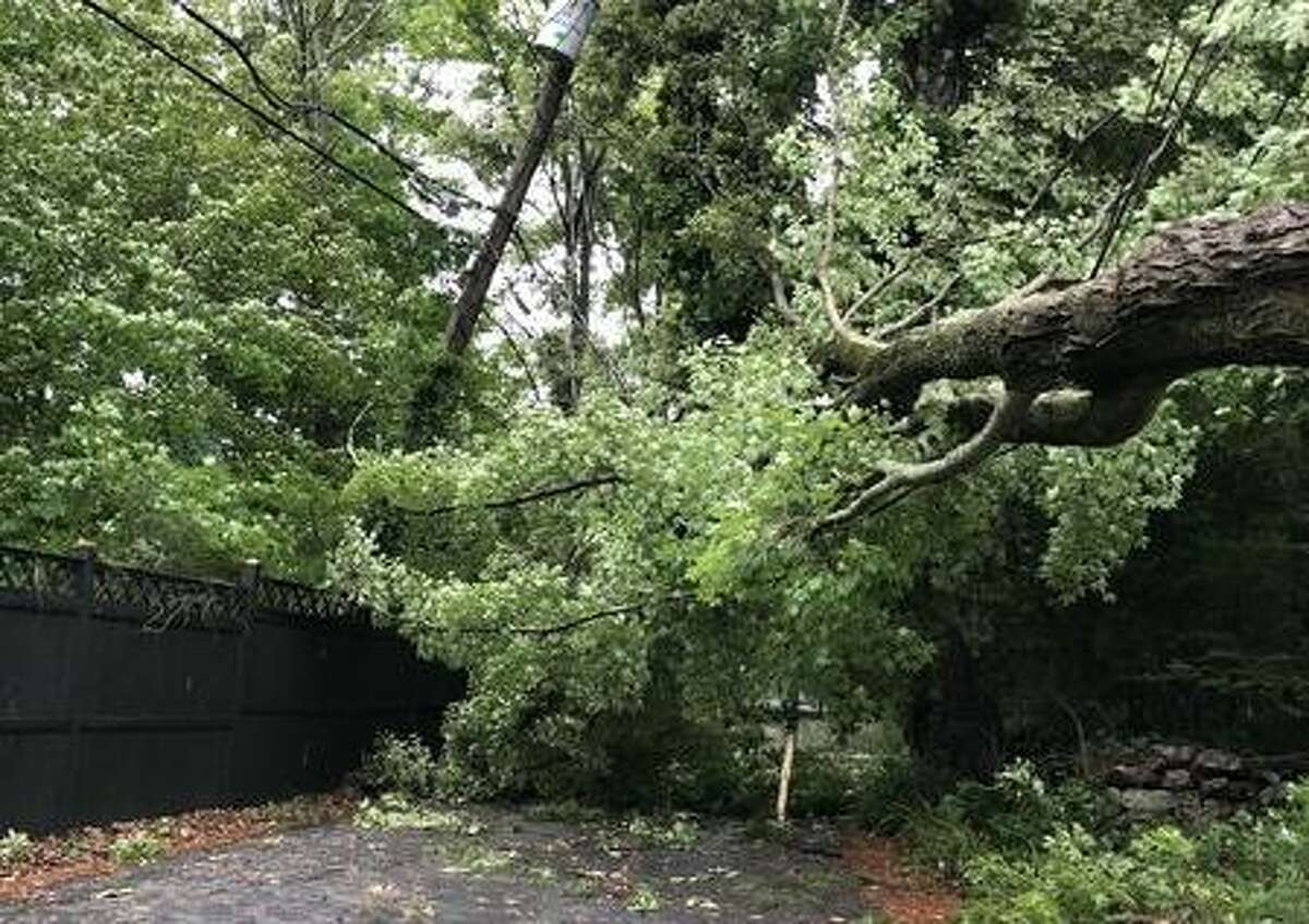 A photo posted on the SeeClickFix app shows a tree down on Trails End Road after Tropical Storm Isaias pummeled Wilton on Aug. 4.